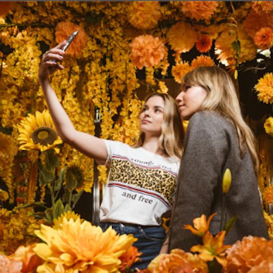 Selfie Market<br>umělecká expozice
