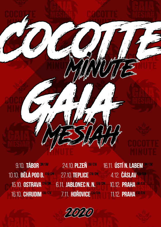 Cocotte Minute<br>Gaia Mesiah