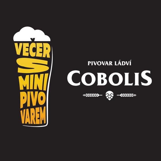 Večer s minipivovarem<br>Pivovar Ládví Cobolis<br>Záznam z 1.února