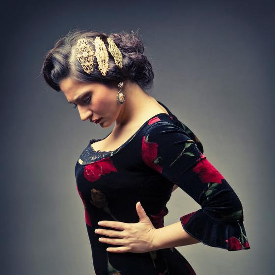 Den Flamenka<BR>Día del flamenco<BR>Karime Amaya