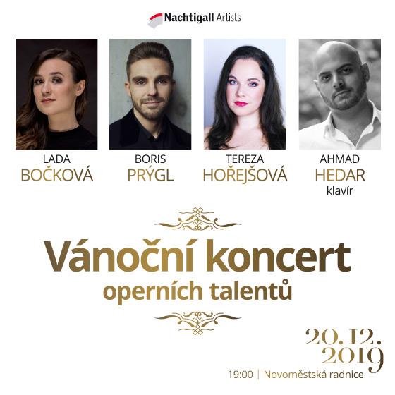 Vánoční koncert<BR>Lada Bočková, Tereza Hořejšová, Boris Prýgl
